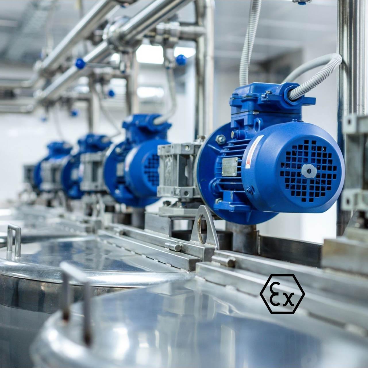Industriepumpe ATEX